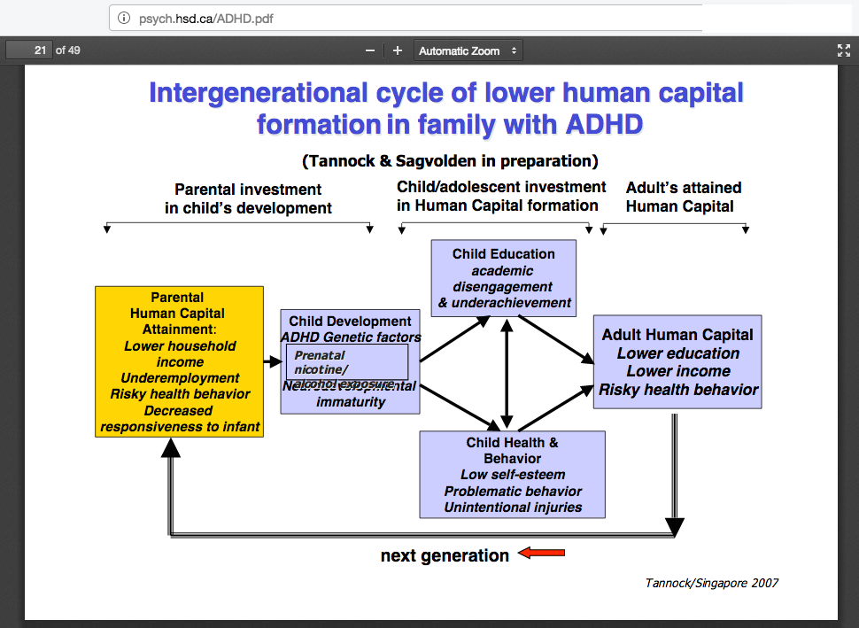 Intergenerational cycle of lower human capital formation formation in family with ADHD in family with ADHD Dr. Rosemary Tannock http-::psych.hsd.ca:ADHD